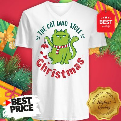 Pretty The Cat Who Stole Christmas Holiday Purresents Cartoon Funny V-Neck
