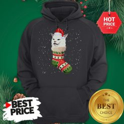 Cat Ugly Christmas Cat In Stocking Ugly Christmas Kids Hoodie