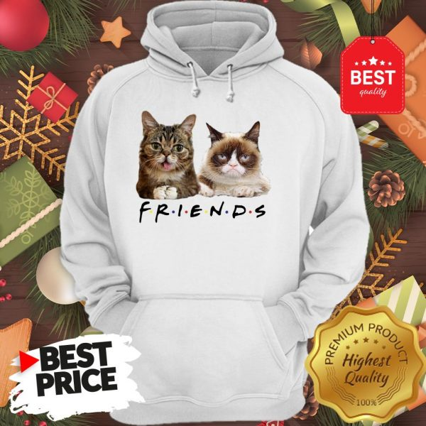Pretty Grumpy And Lil Bub Cats Friends TV Show Hoodie