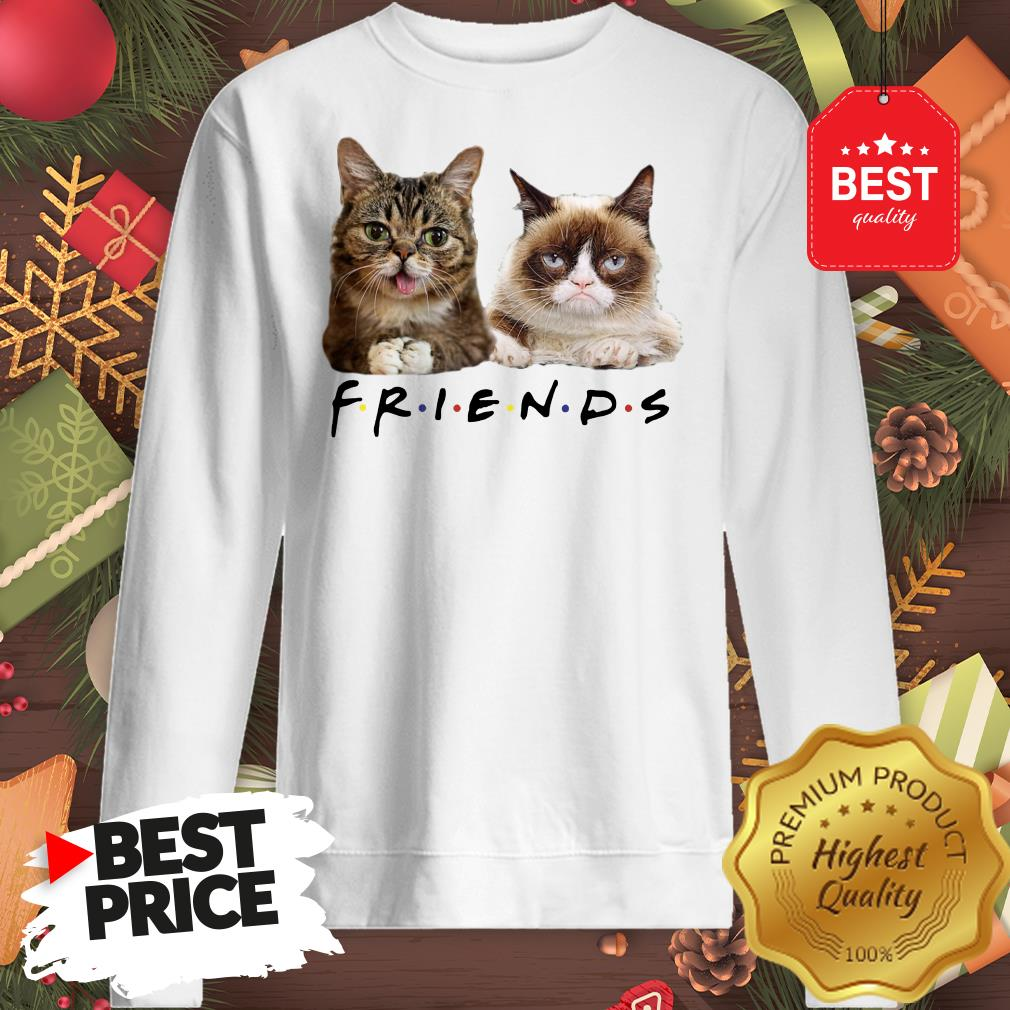 Pretty Grumpy And Lil Bub Cats Friends TV Show Sweatshirt