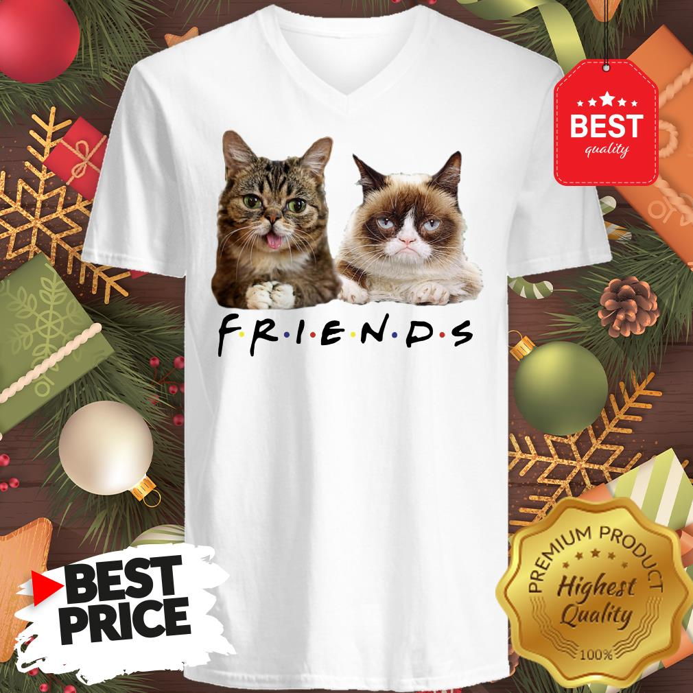 Pretty Grumpy And Lil Bub Cats Friends TV Show V-neck