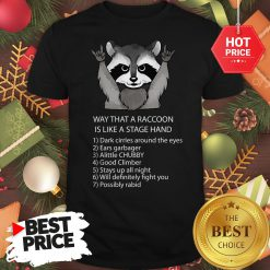 Ways That A Raccoon Is Like A Stagehand Shirt