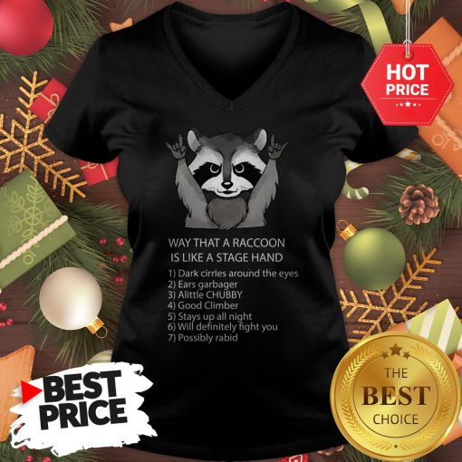 Ways That A Raccoon Is Like A Stagehand V-neck