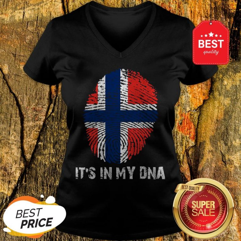 Norway American It's In My DNA V-Neck