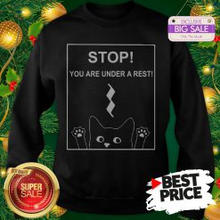 Stop You Are Under A Rest Funny Symbol Music Notes Musician Sweatshirt