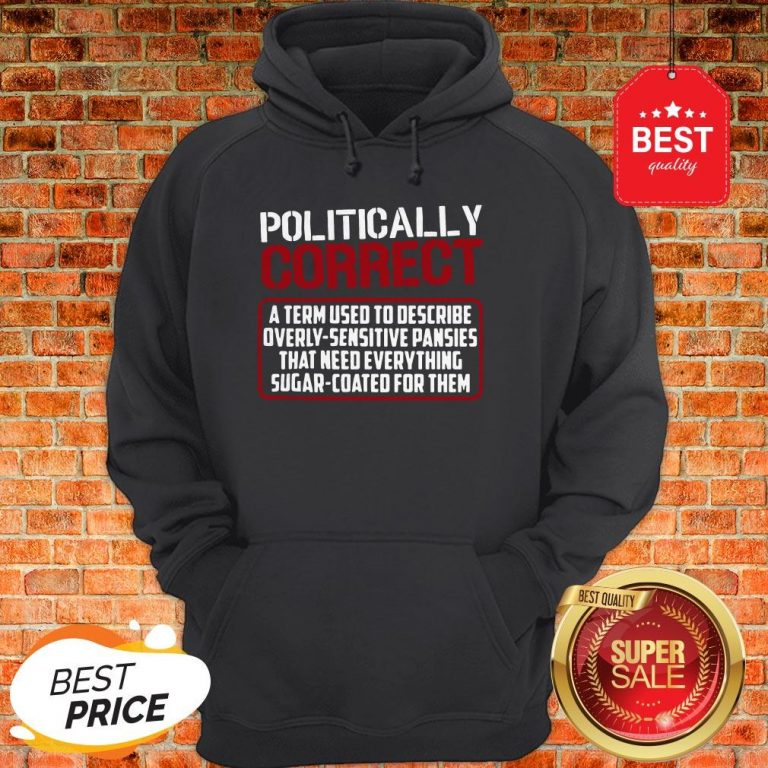 Politically Correct A Term Used To Describe Overly Sensitive Hoodie