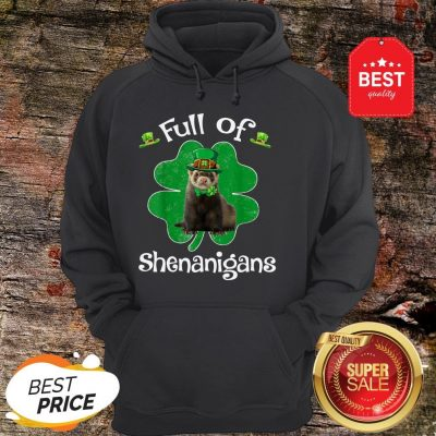 Full Of Shenanigans Ferret St Patrick's Day Gifts Hoodie