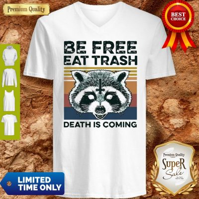 Vintage Raccoon Be Free Eat Trash Death Is Coming V-Neck