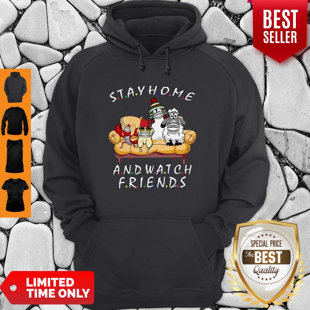 Pets Stay Home And Watch Friends Cartoon COVID-19 Hoodie