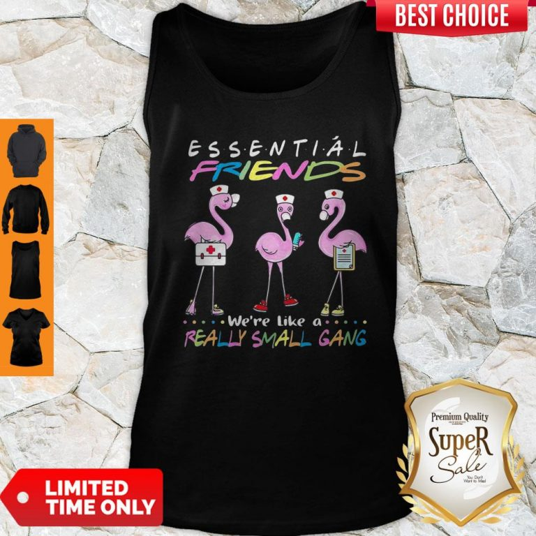 Flamingo We're More Than Just Essential Friends We're Like A Really Small Gang Tank Top