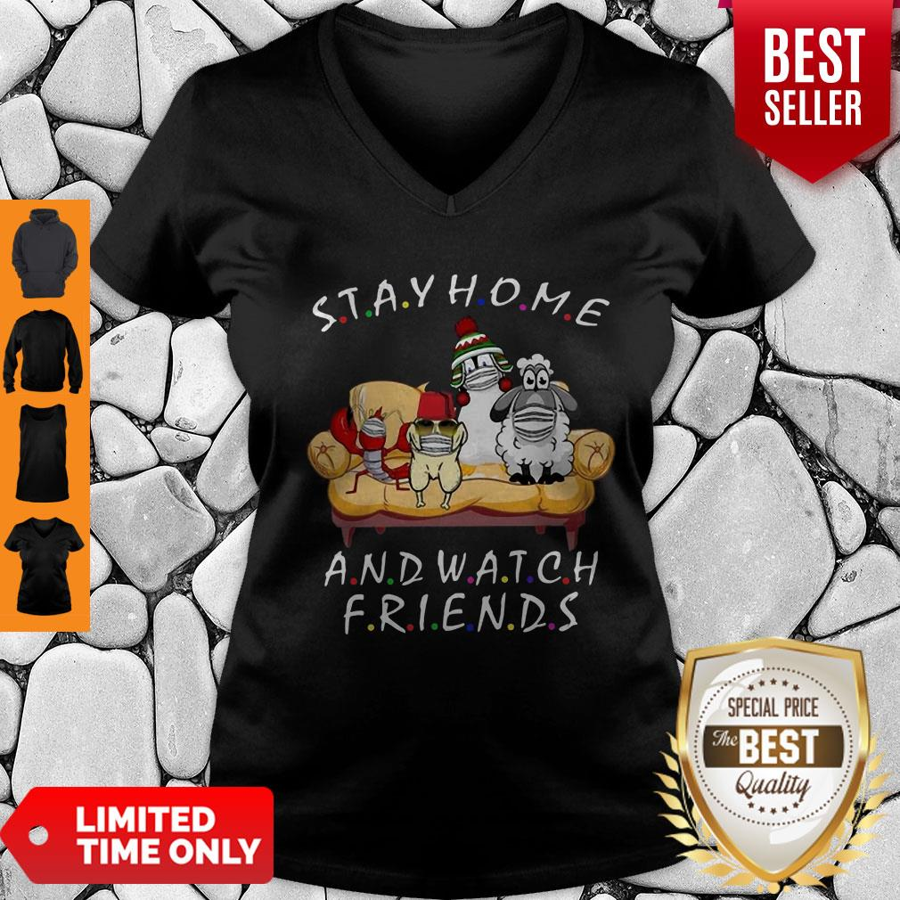 Pets Stay Home And Watch Friends Cartoon COVID-19 V-Neck
