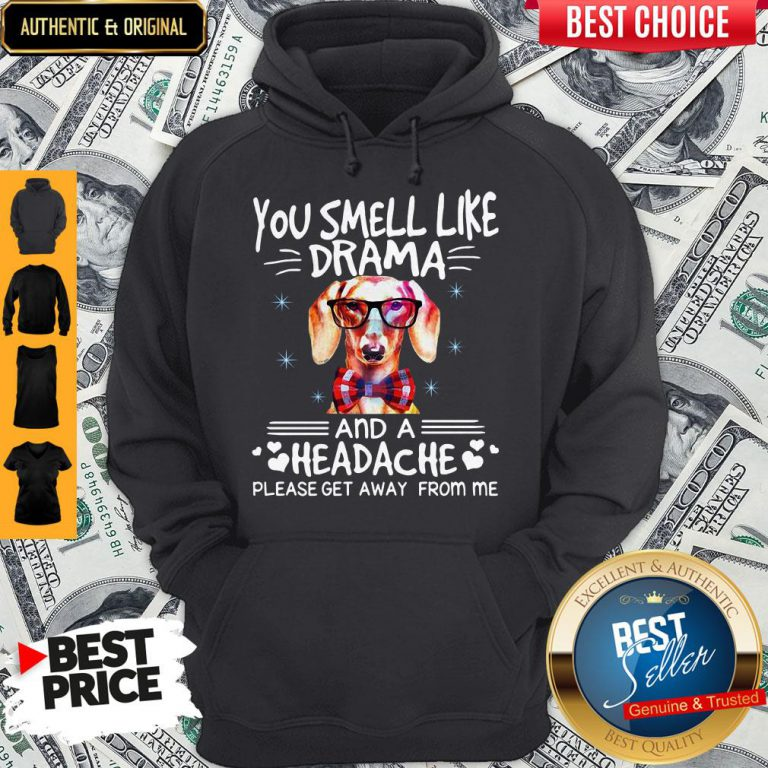You Smell Like Drama Dog And A Headache Please Get Away From Me Hoodie