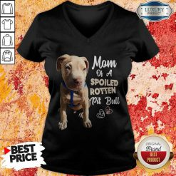 Awesome Mom Off A Spoiled Rotten Pit Bull V-neck