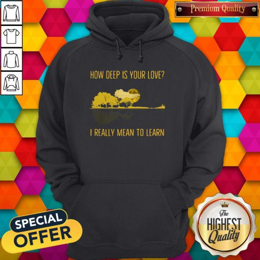 how deep is your love i really mean to learn guitar hoodie