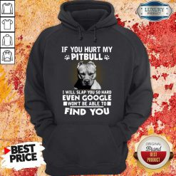 if you hurt my pitbull i will slap you so hard even google wont be able to find you hoodie