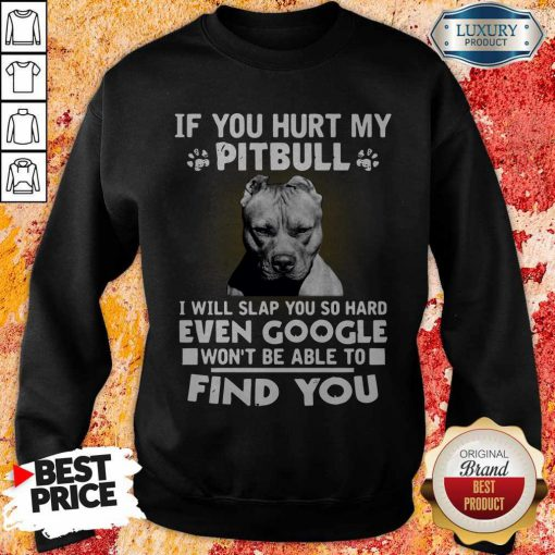 if you hurt my pitbull i will slap you so hard even google wont be able to find you sweatshirt