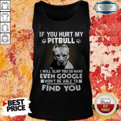 if you hurt my pitbull i will slap you so hard even google wont be able to find you tank top