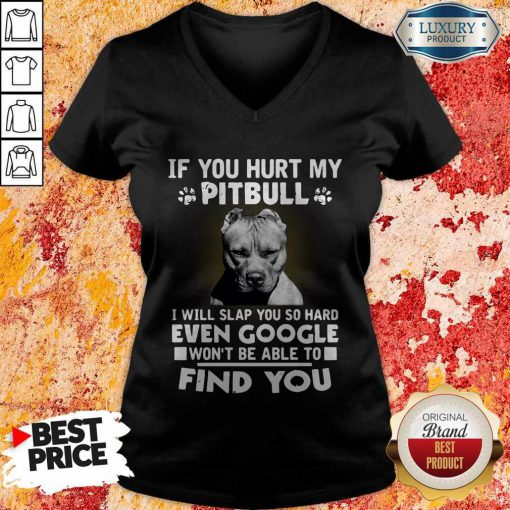 if you hurt my pitbull i will slap you so hard even google wont be able to find you v neck