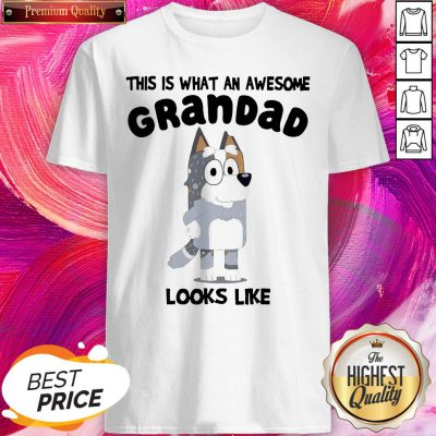 Official This Is What An Awesome Grandpa Bandit Heeler Looks Like Shirt