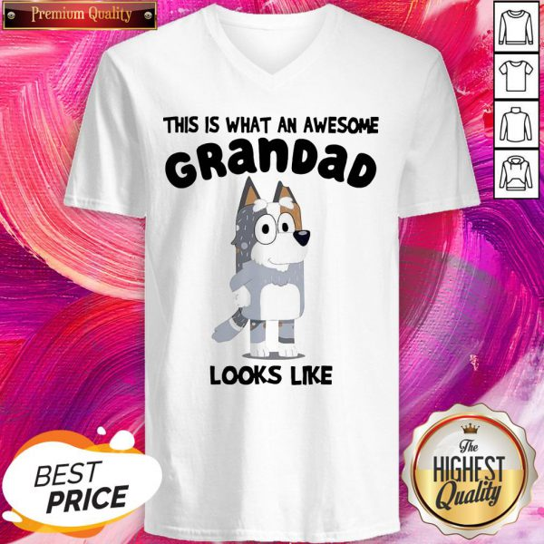 Official This Is What An Awesome Grandpa Bandit Heeler Looks Like V-neck