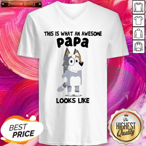 Official This Is What An Awesome Papa Bandit Heeler Looks Like V-neck