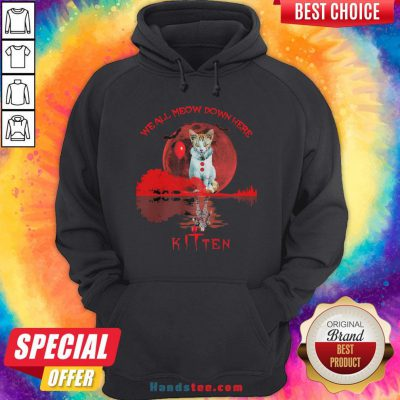 We All Meow Down Here Clown Cat Pennywise Kitten Moon Blood Halloween Hoodie - Design By Handstee.com