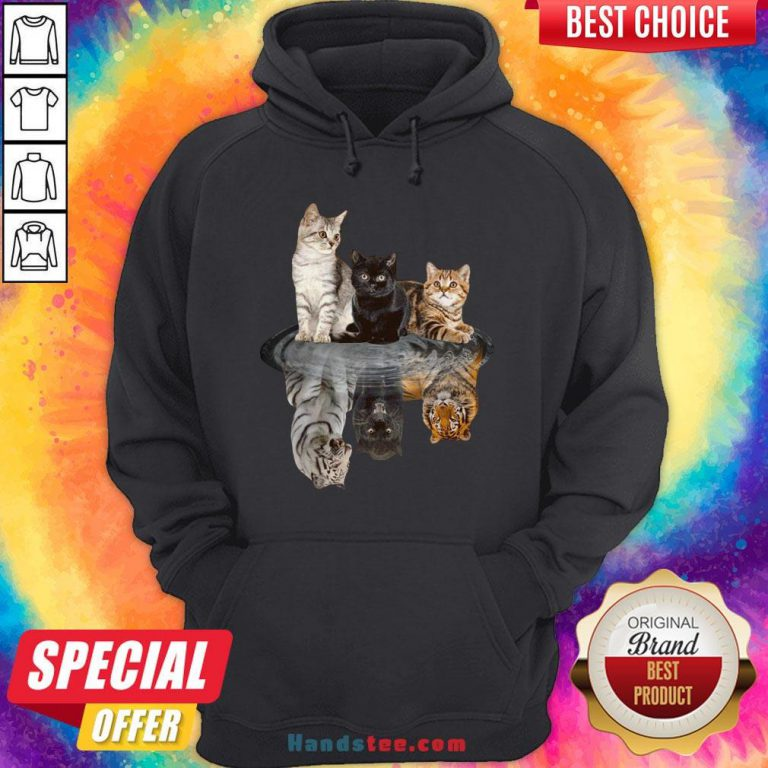 Awesome The Cats Water Mirror Reflection Tigers Hoodie - Design By Handstee.com