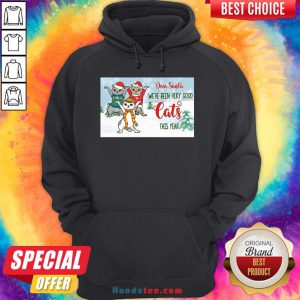 Original Christmas Kitty Dear Santa We've Been Very Good Cats This Year Hoodie- Design By Handstee.com