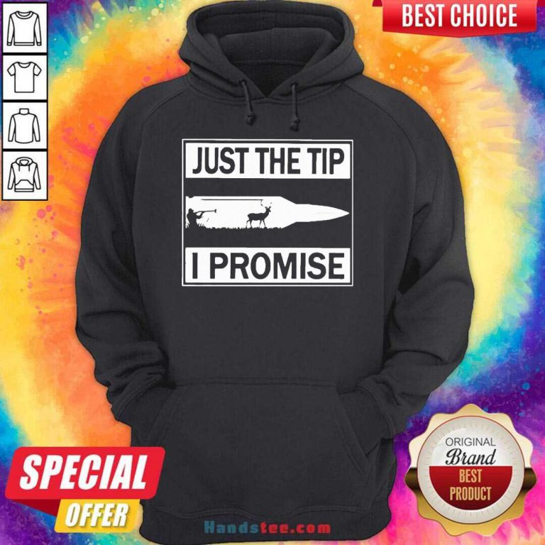 Just The Tip I Promise Hoodie- Design By Handstee.com