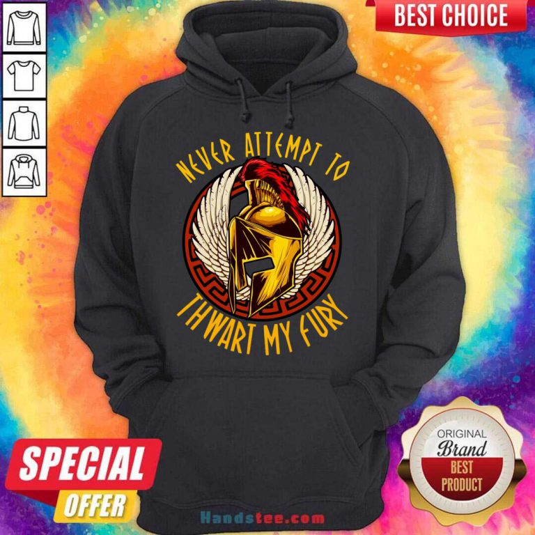 Never Attempt To Thwart My Fury Hoodie- Design By Handstee.com
