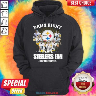So Damn Right I Am A Pittsburgh Steelers Fan Now And Forever Signature Hoodie- Design By Handstee.com