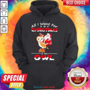 Pretty Santa Claus All I Want For Christmas Is An Owl Sweat Hoodie- Design By Handstee.com