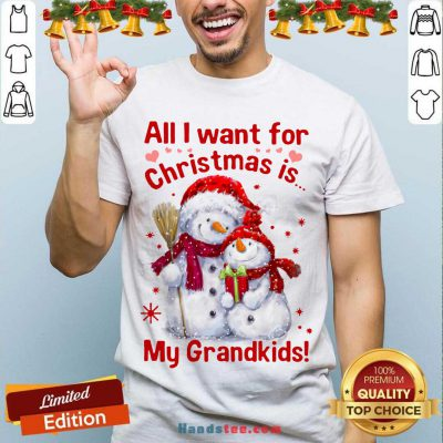 All I Want For Christmas Is My Grandkids Shirt- Design By Handstee.com