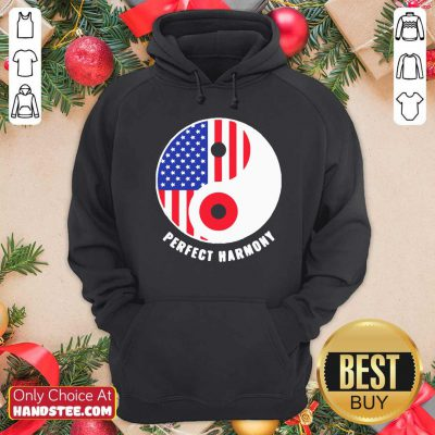 Funny USA Japan Ying Yang Heritage For Proud Japanese American Flag Hoodie- Design by handstee.com