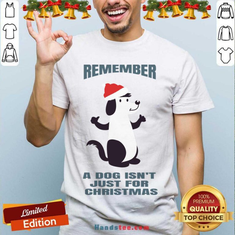 A Dog Isn't Just For Christmas Shirt- Design By Handstee.com