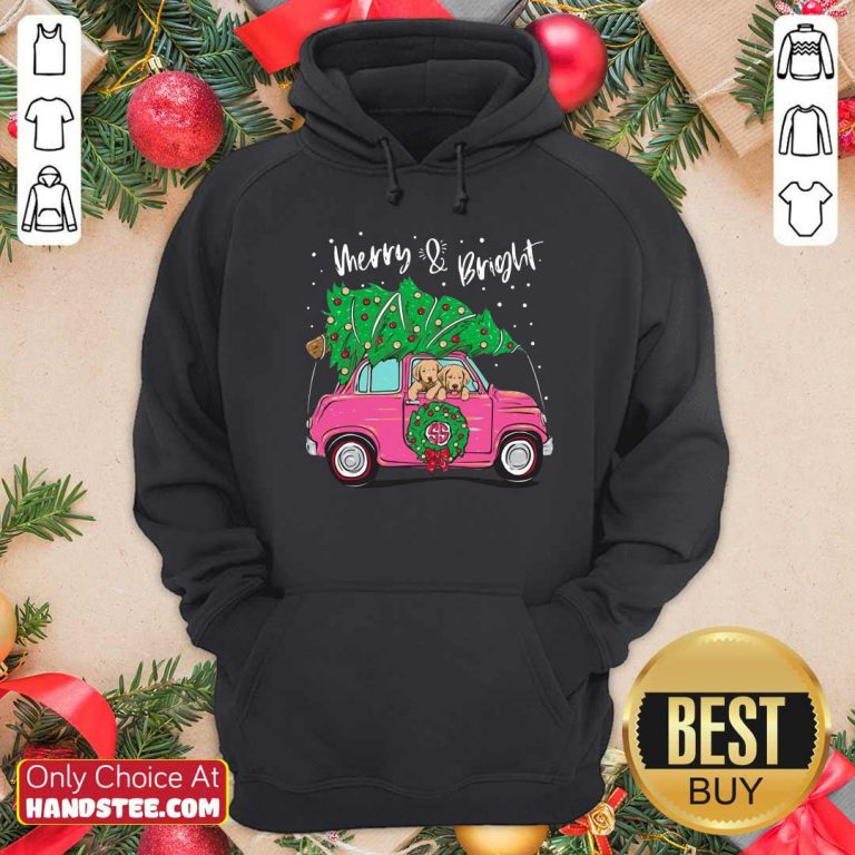 Nice Merry And Bright Pitbull Dog Ugly Christmas Hoodie - Design by handstee.com