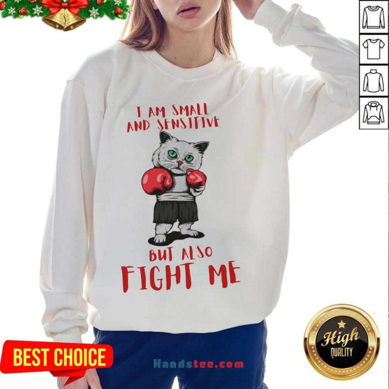 I Am Small And Sensitive But Also Fight Me Cat Boxing Sweatshirt- Design By Handstee.com