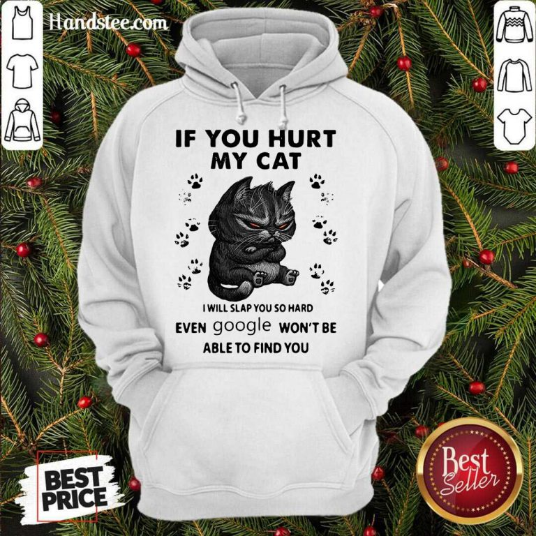 If You Hurt My Cat I Will Slap You So Hard Even Google Won't Be Able To Find You Hoodie- Design By Handstee.com