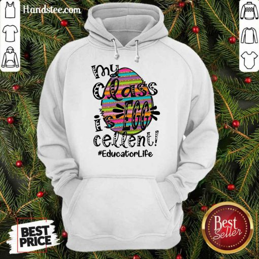 Amused Educator Life My Class Is Egg Cellent Hoodie