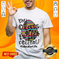 Amused Educator Life My Class Is Egg Cellent Shirt