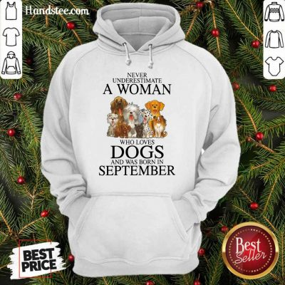 Excited September Never Underestimate A Woman Who Loves Dogs Hoodie