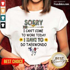 Top Sorry I Can't I Come To Work Today I Have To Taekwondo Ladies Tee