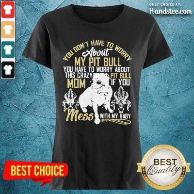 Don't Mess With My Pitbull Ladies Tee