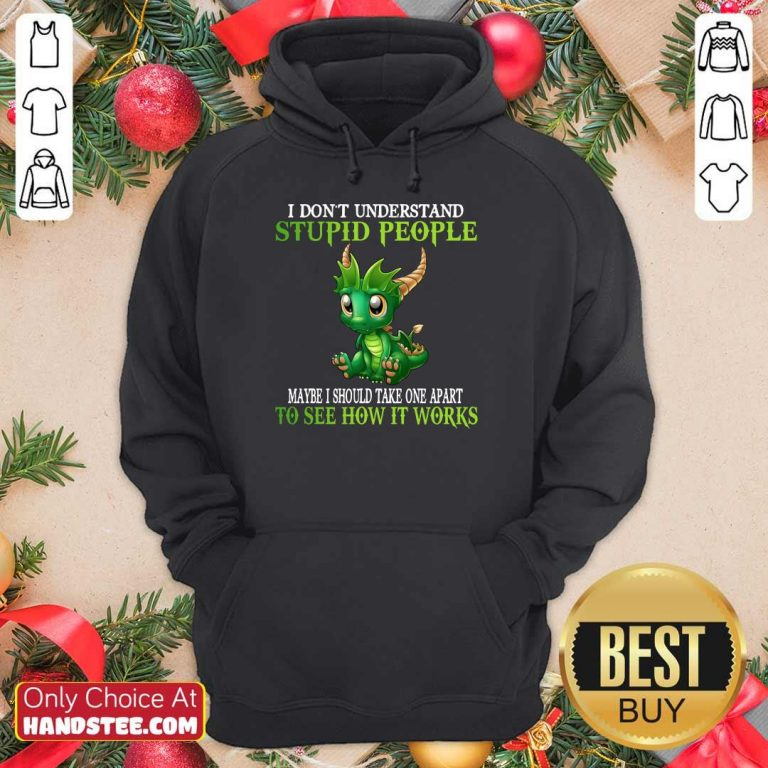 Dragon I Don't Understand Stupid People Hoodie