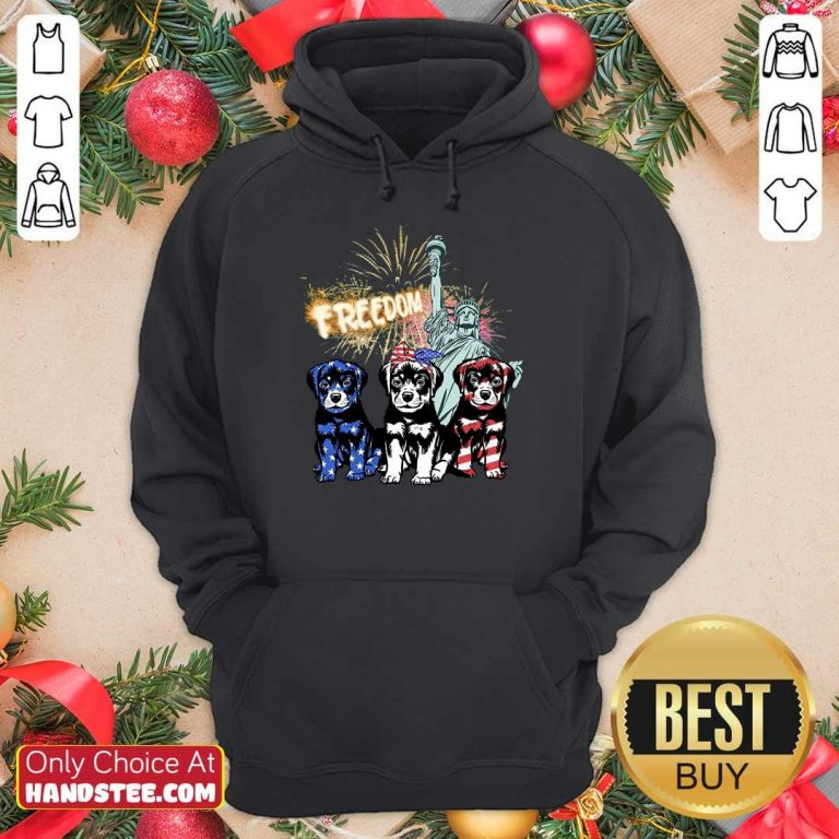 Freedom Rottweilers Statue Of Liberty USA Flag Hoodie