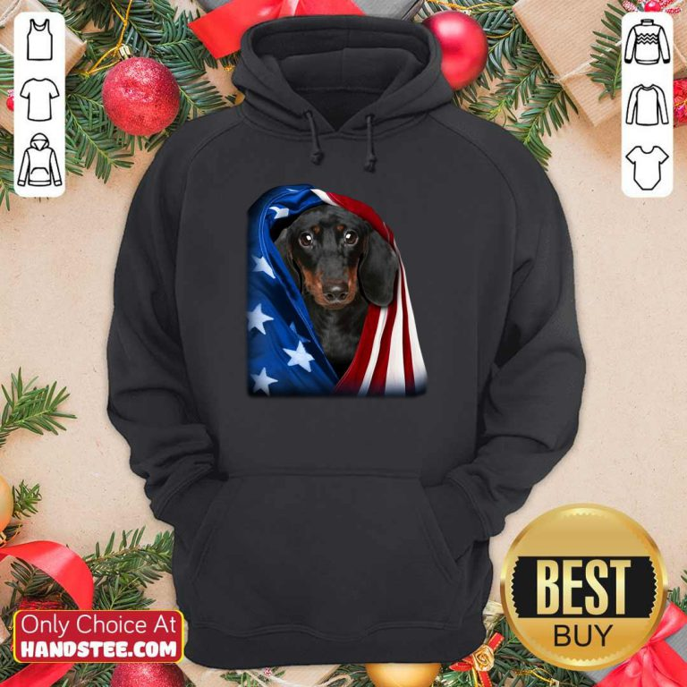 Dachshund Wrapped In American Flag Hoodie