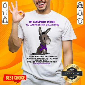 Donkey I'm Constantly In Pain Yes Constantly Every Single Second Fibromyalgia Awareness Shirt